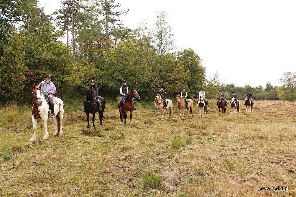 Pony-centrum paarden manege Thea Koopman Lieren Oosterhuizen bosrit buitenrit