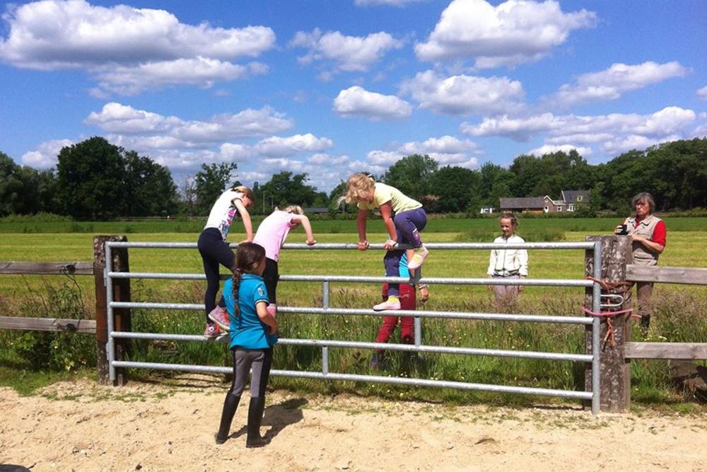 ponycentrum koopman oosterhuizen manege paard pony dagkamp ponykamp